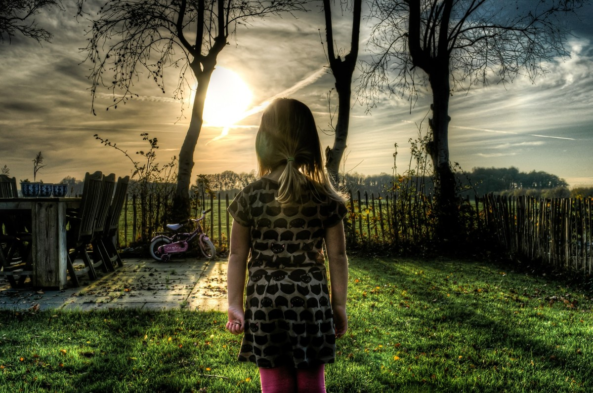 """Dreams of a backyard could represent our childhood memories.  When we find a childhood bicycle, we may wonder, """"What direction this memory is taking us?"""""""