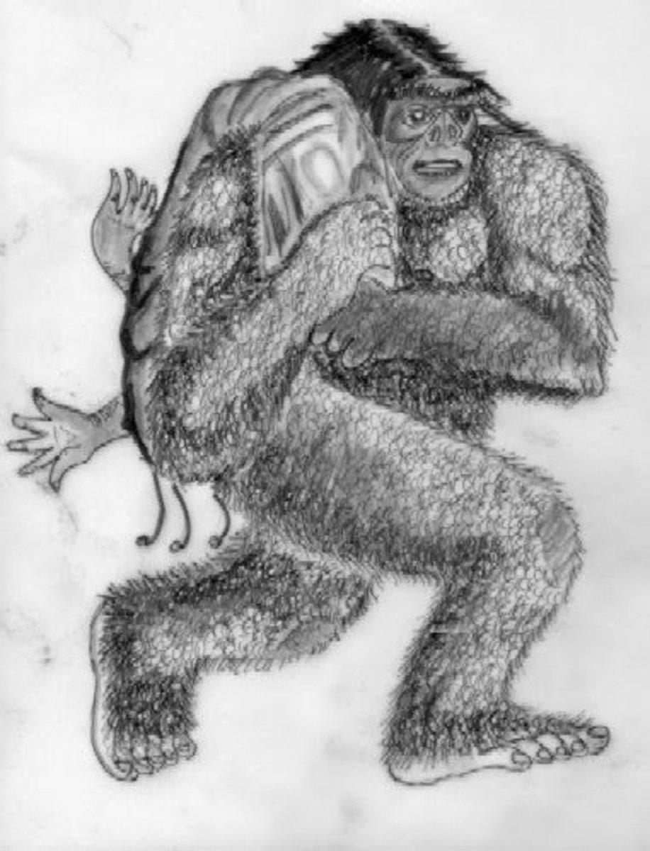 Artist's interpretation of Ostman's kidnapping.