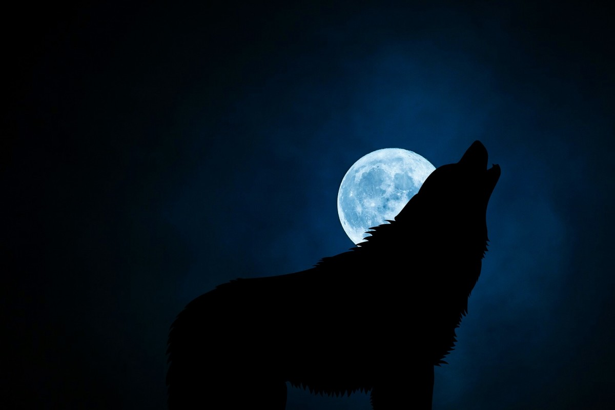 600-inspirational-werewolf-names-for-boys-and-girls