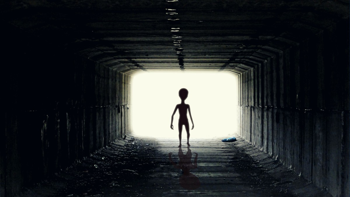 A recent string of declassified documents, leaked memos, and an eye-witness testimony has confirmed what we have all known: that aliens exist and they have visited this planet.