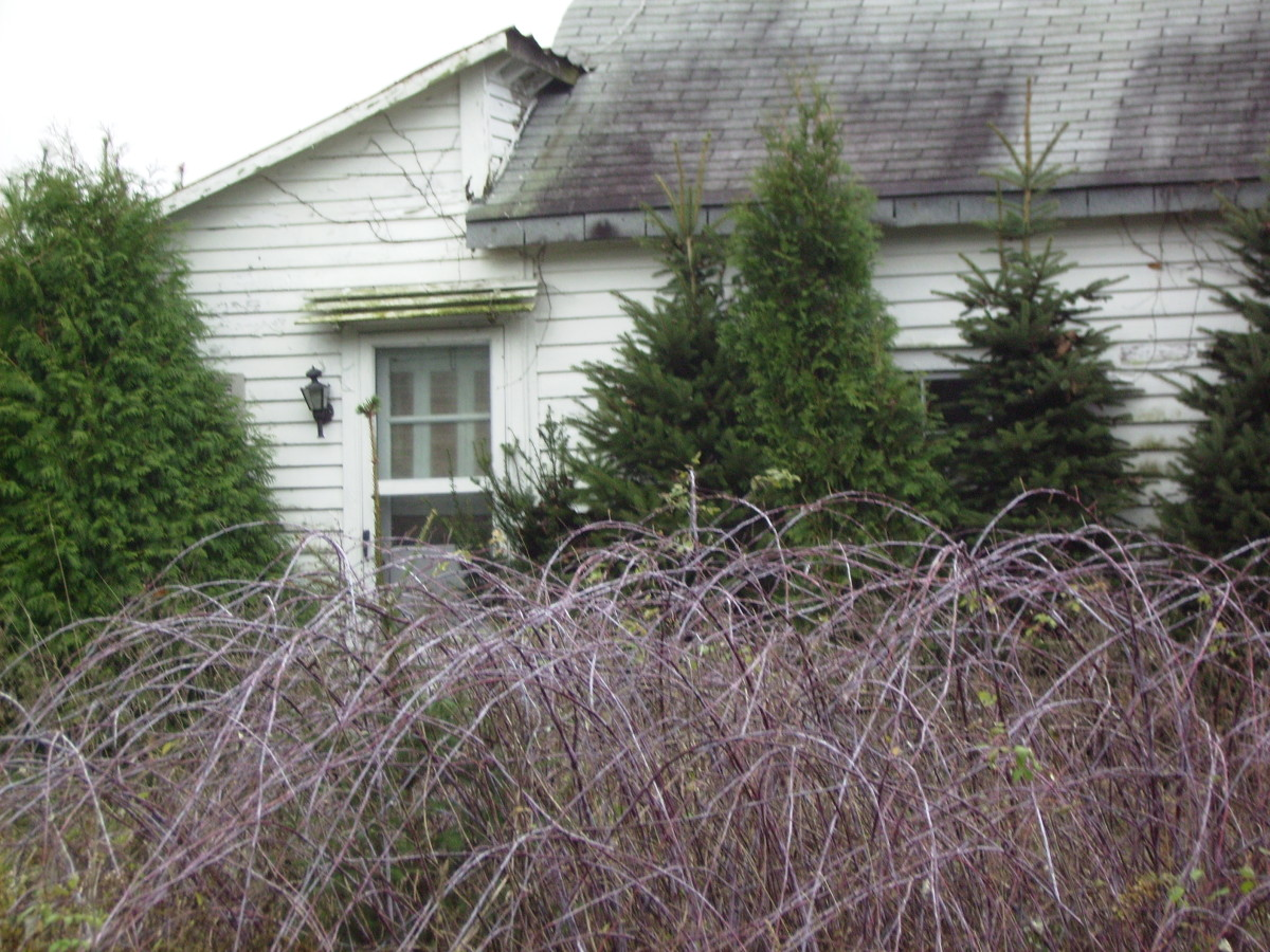Another view of the Hooker brothers' former home. The house has fallen into disrepair over the 30 years since the tragic murder.