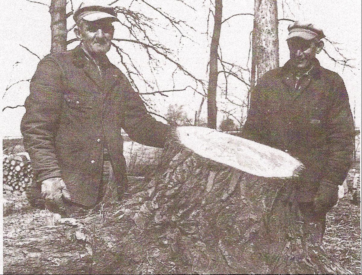 Joseph and Edward Hooker of New London, Ohio.