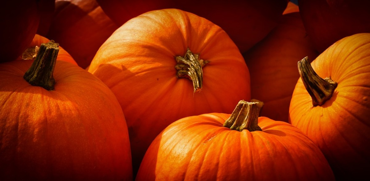 Samhain is the perfect time for pumpkin magic.