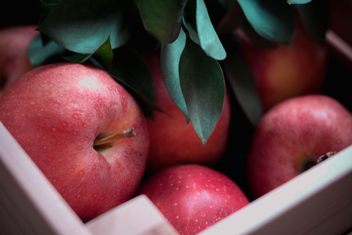Apples can be cut to reveal a five pointed star.