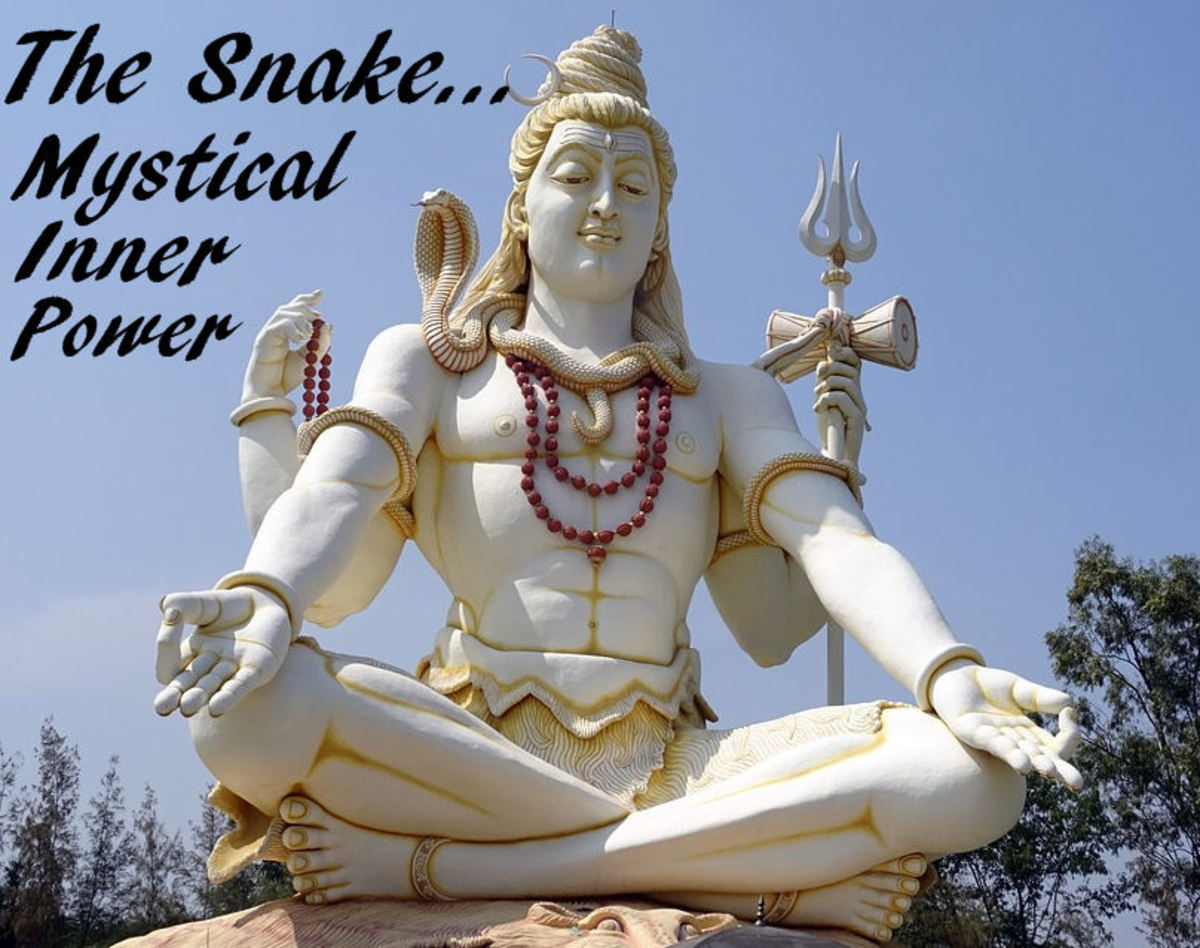 Hindu Shiva Snake Wisdom Statue