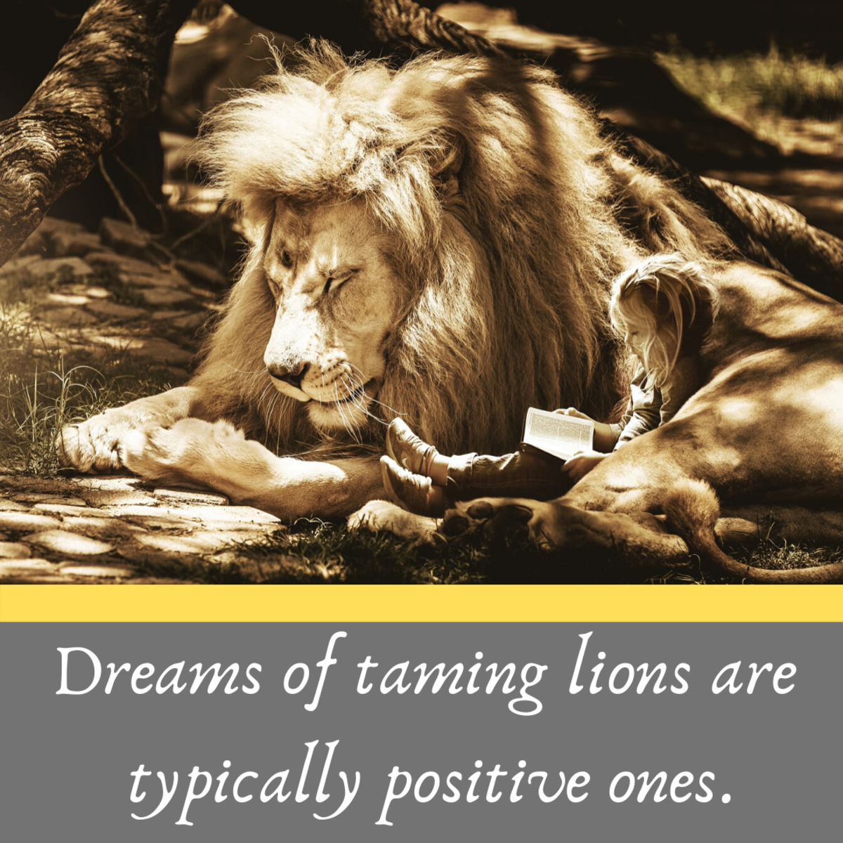 The lion taming dream can symbolize our success in facing down our fears.