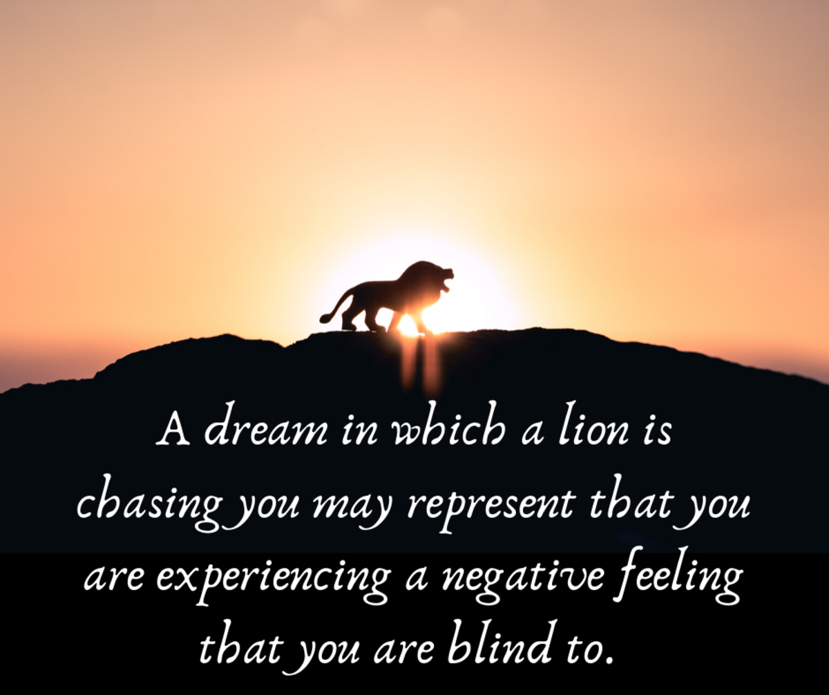 Lions chasing you in your dreams can be a scary recurring dream.