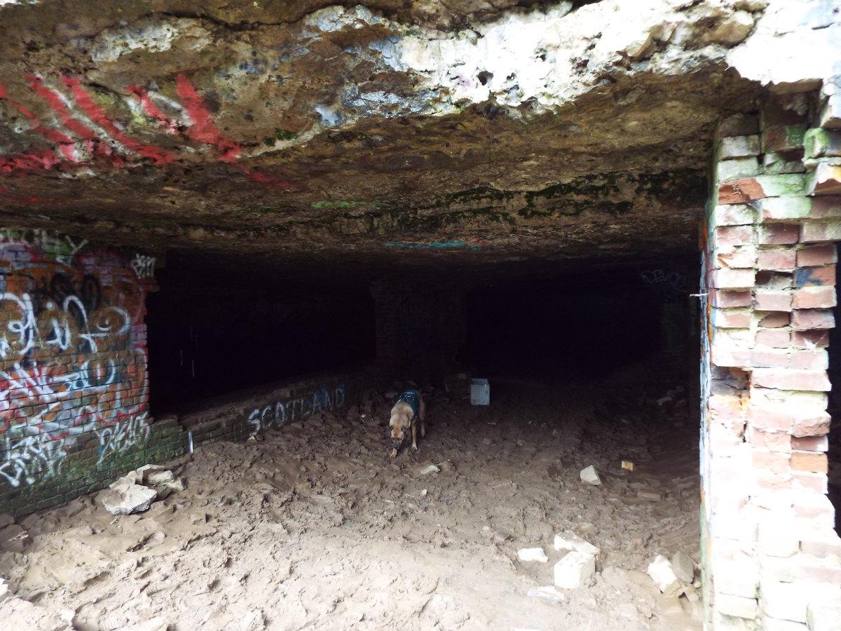 Photo of the opening of Sauerkraut Cave in Louisville, Kentucky