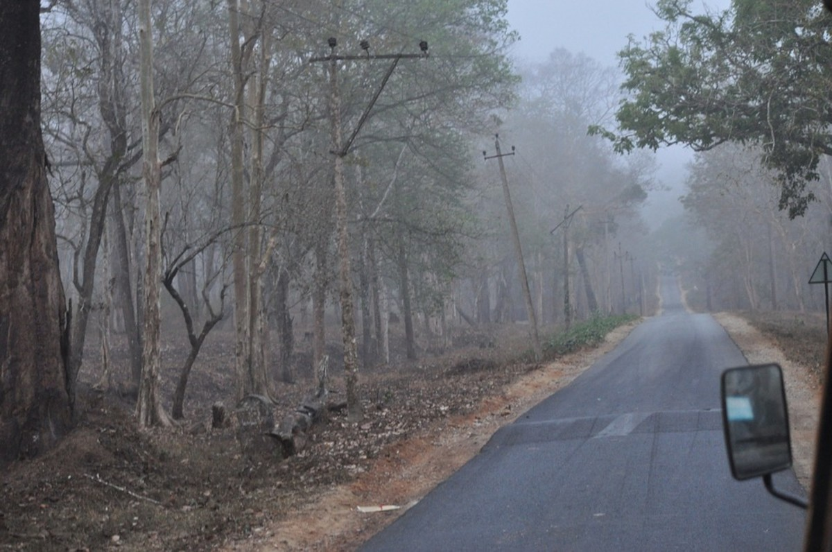 Highway 5 Ghost Haunted Alabama