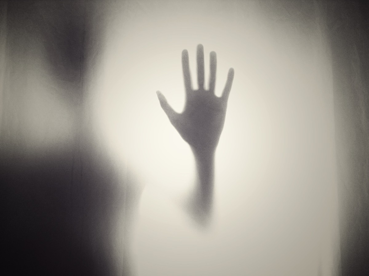 Shadowy images can occur in sleep paralysis.