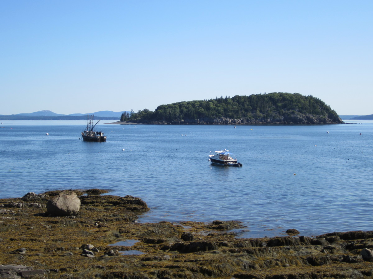 Porcupine Island and harbor from Shore Path