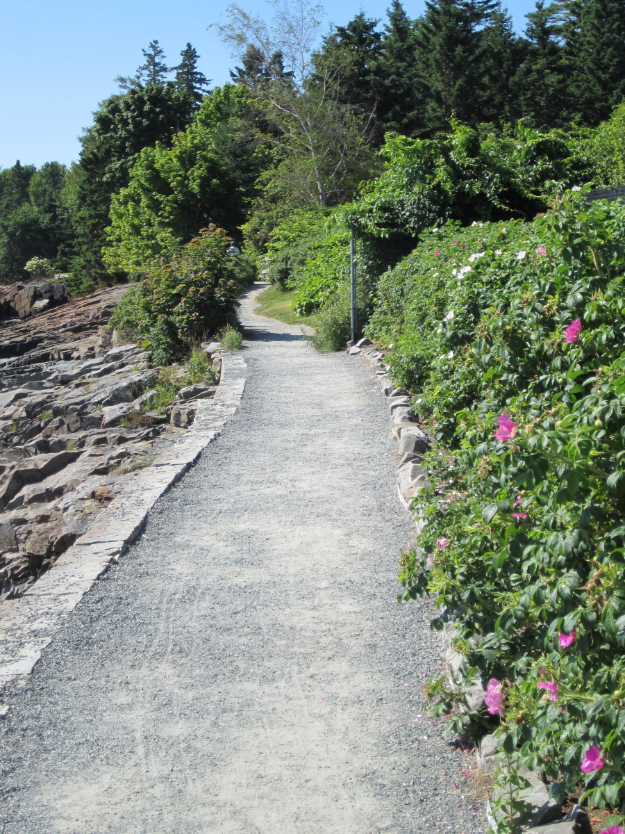 Shore Path, Bar Harbor Maine