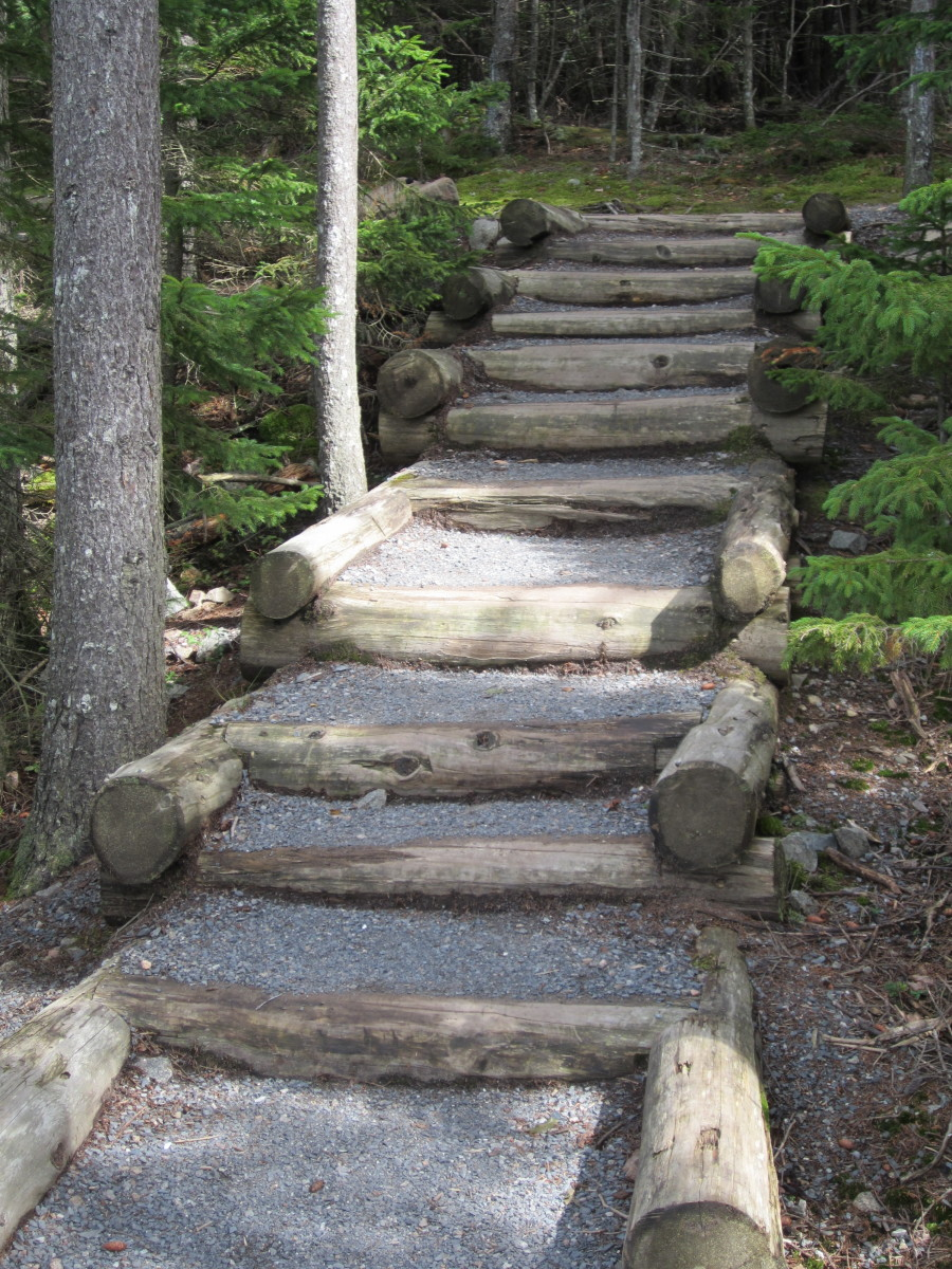 Steps on Ship Harbor Trail