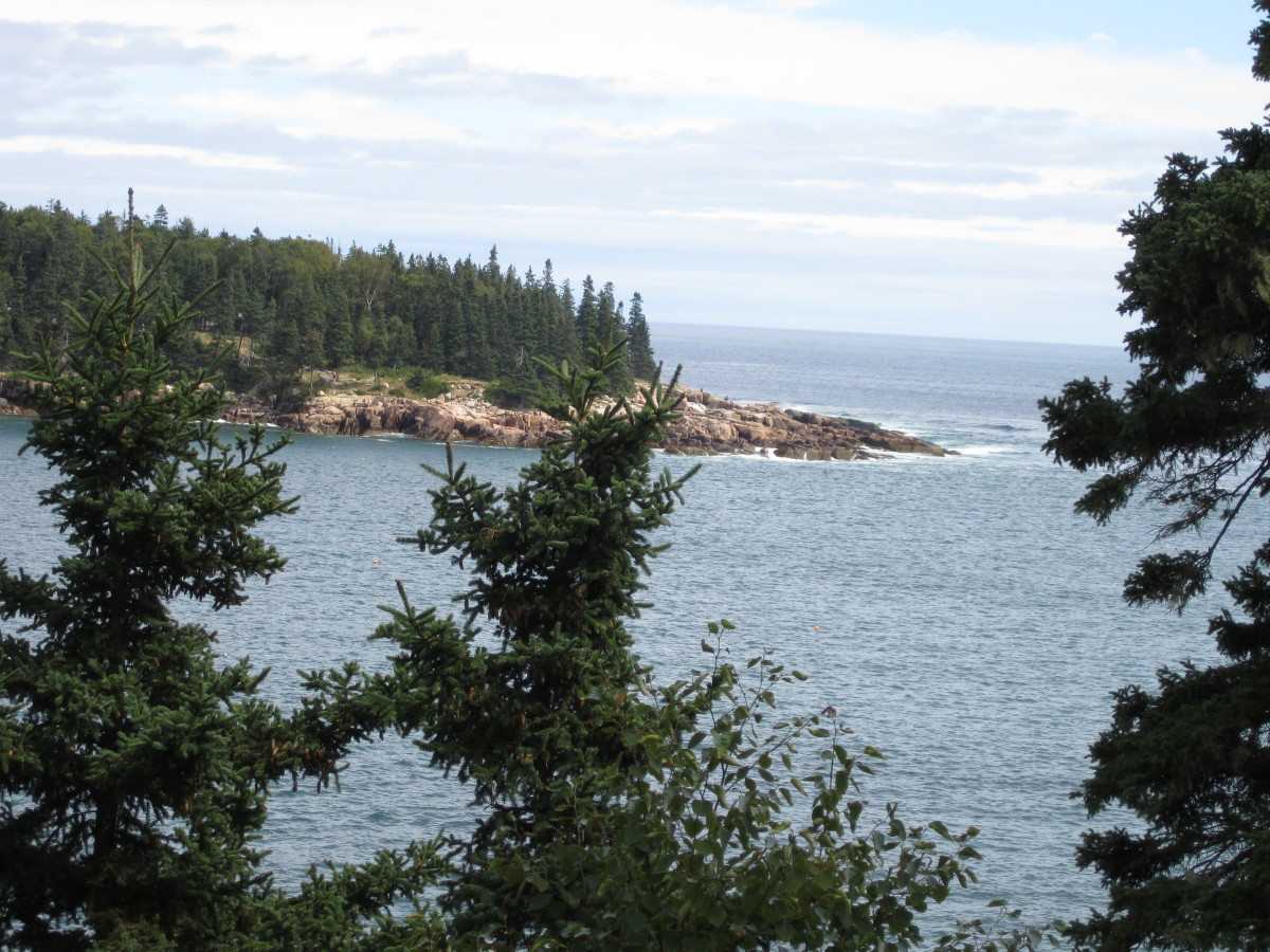 Looking back across Otter Cove to Otter Point