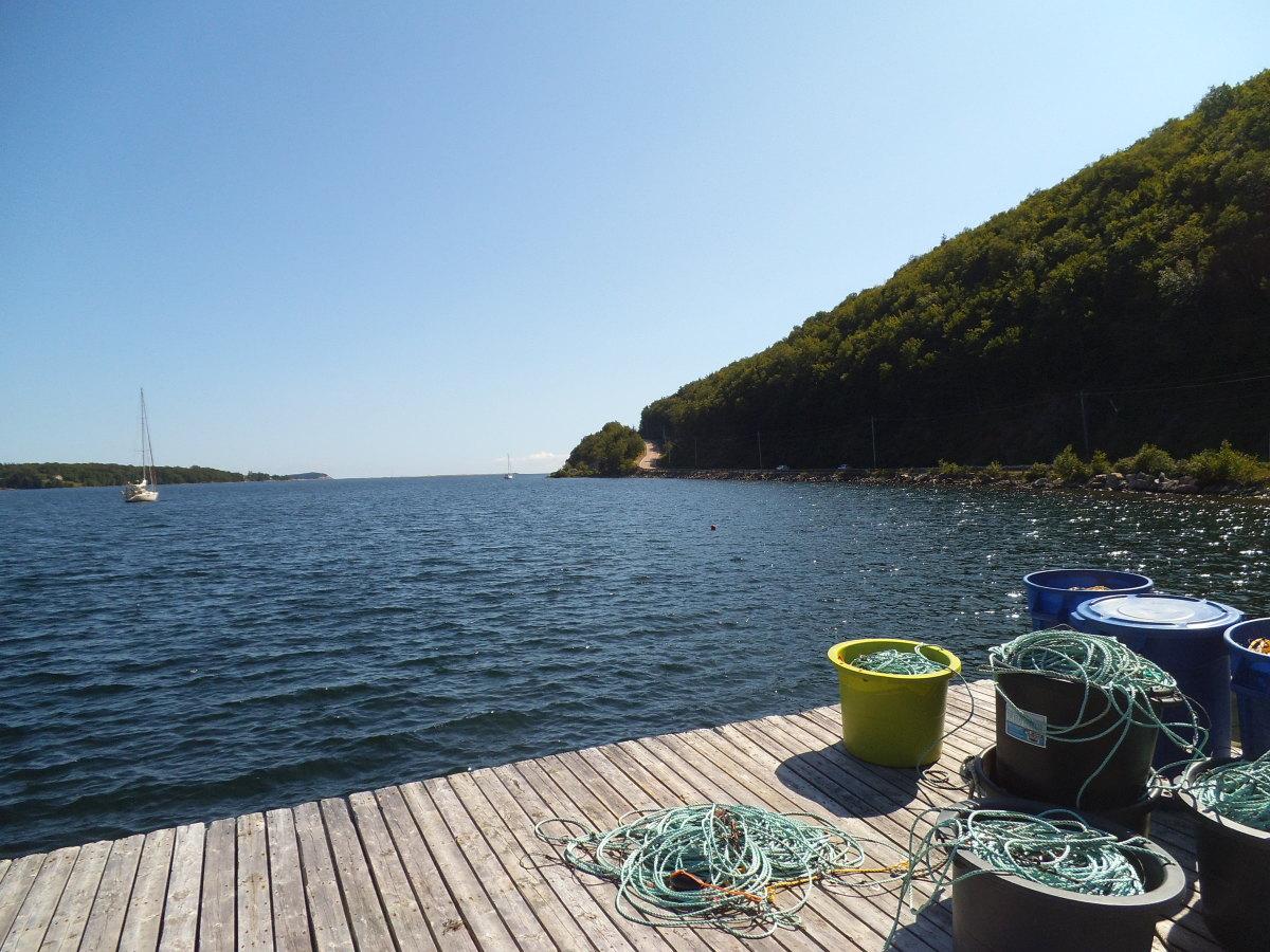Neil's Harbor