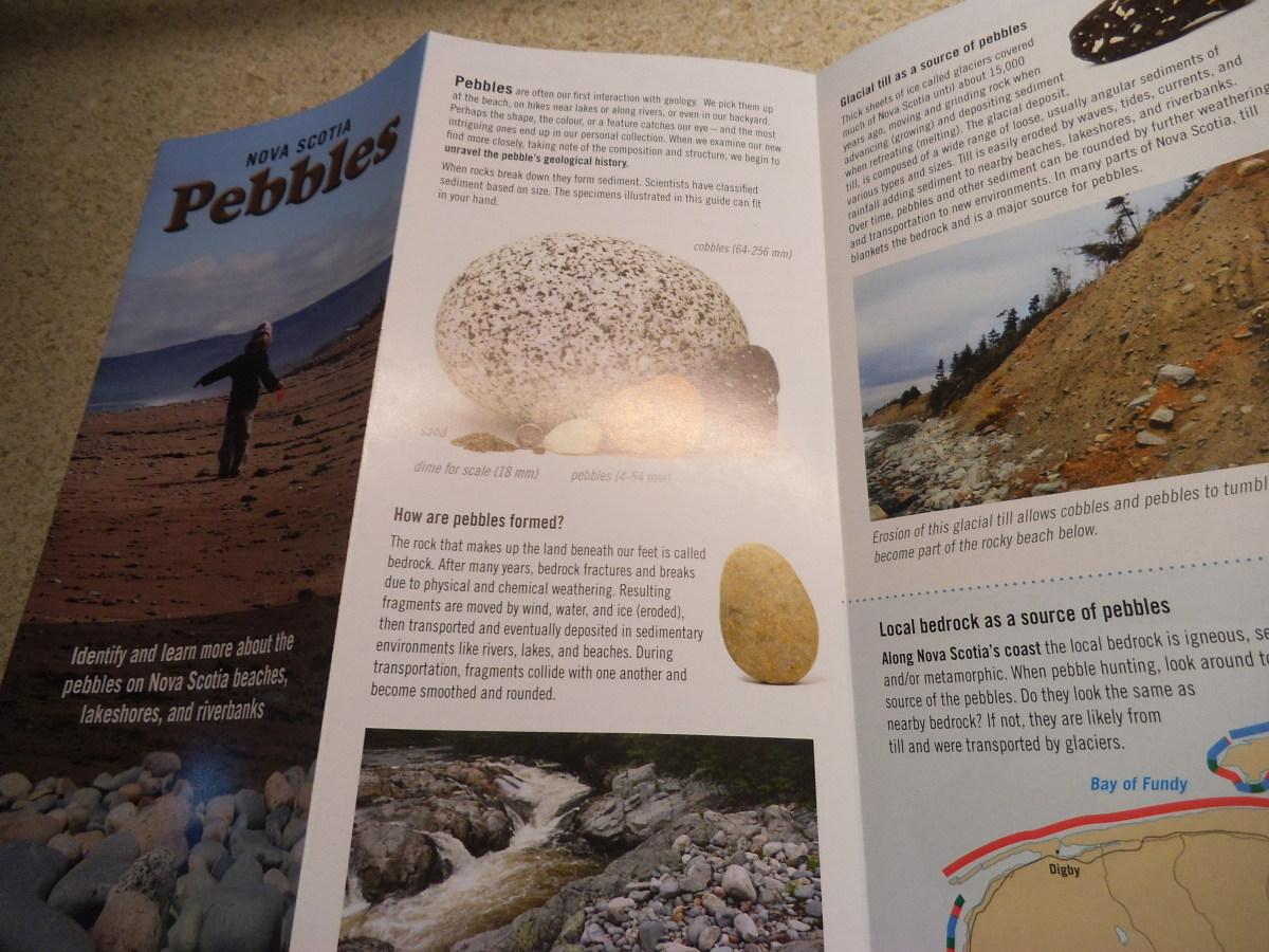 Pebble brochure.