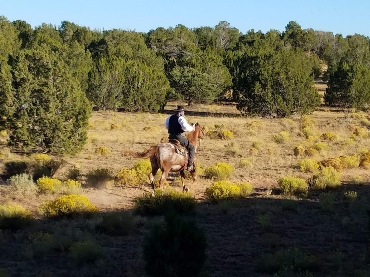Train robbers on horseback.