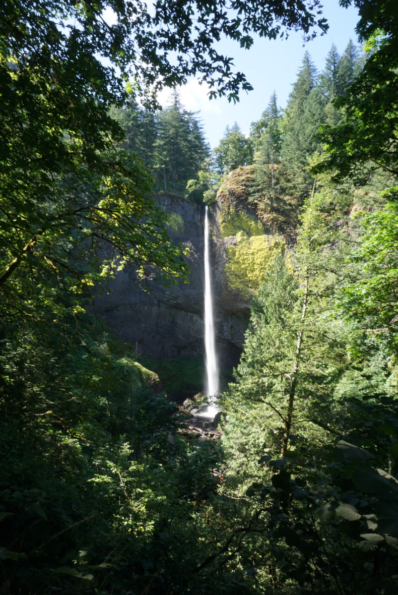 Latourell Falls (250 feet)