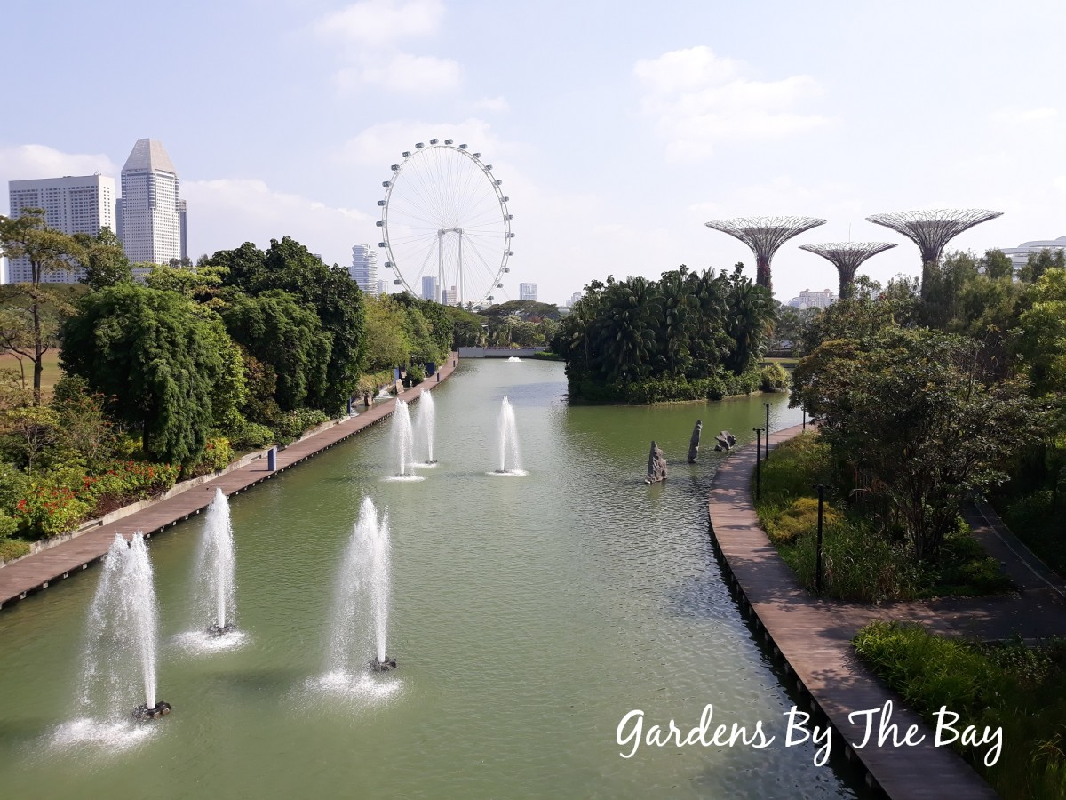 View of the serene Dragonfly Lake at Gardens By The Bay with the gigantic Singapore Flyer in the distance.
