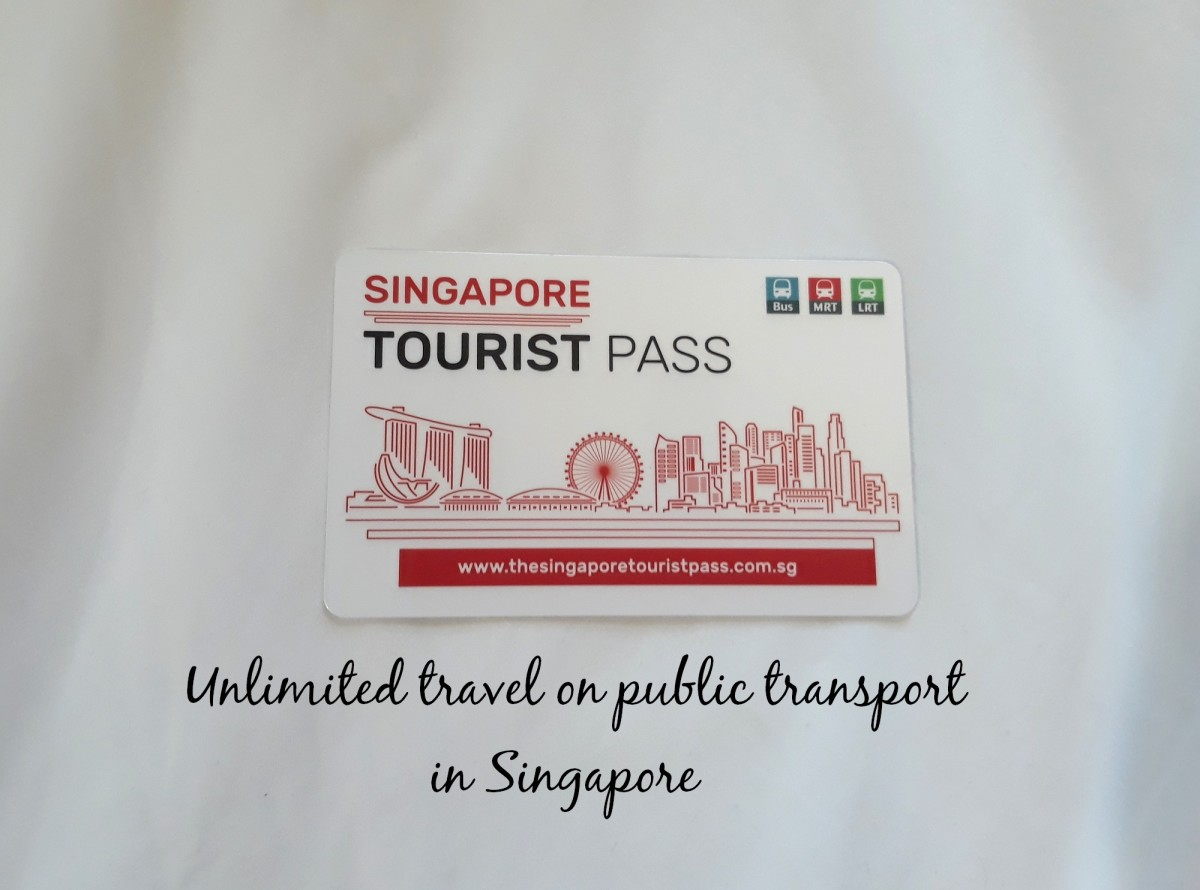 This is how the Singapore Tourist Pass looks like. It gives you unlimited travel on public buses and trains, with a few exceptions listed in a booklet that comes with purchase of card.