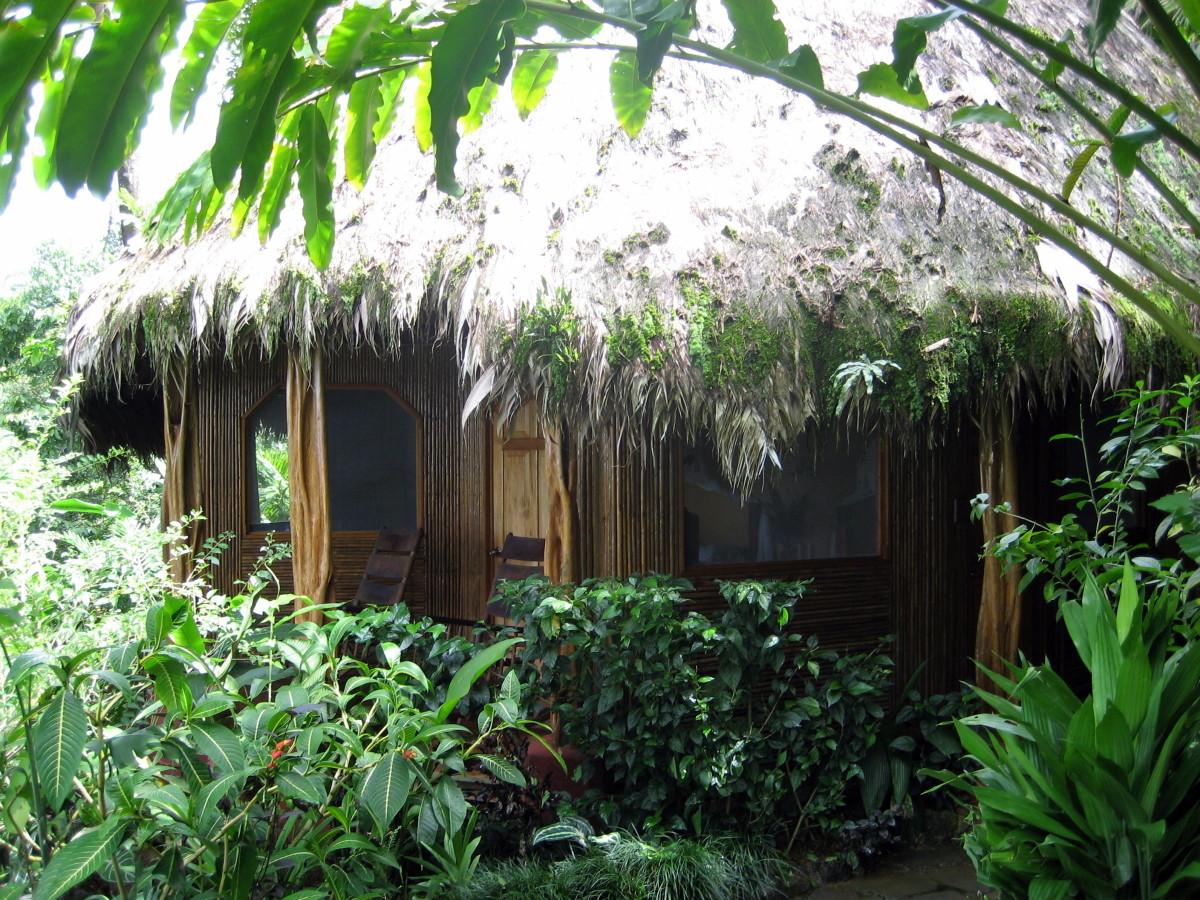 A bungalow at Luna Lodge