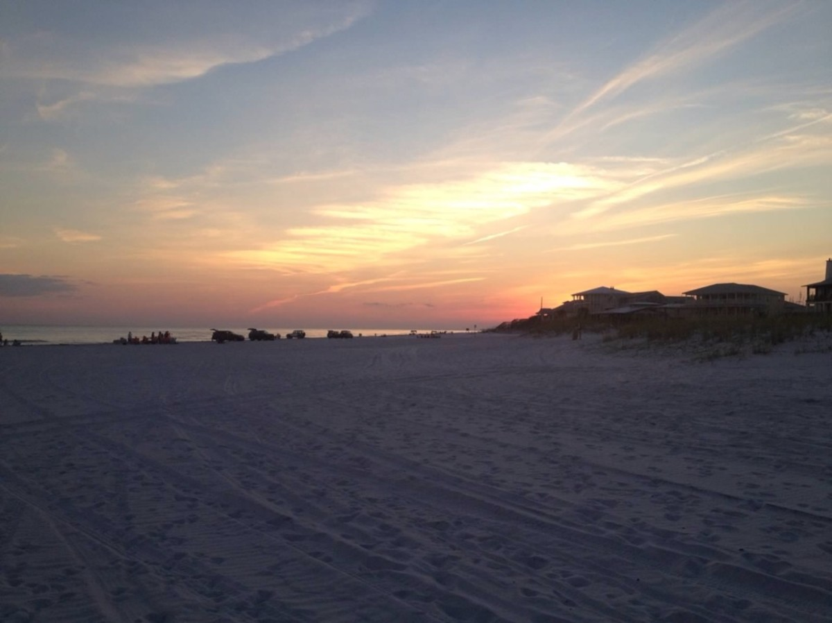 Grayton Beach is one of the few beaches that allows permitted vehicles on the beach.