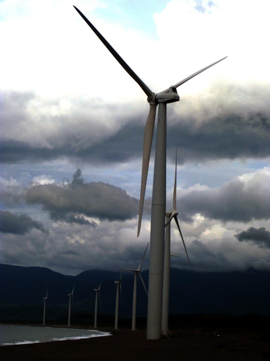 The Windmills at Bangui Bay