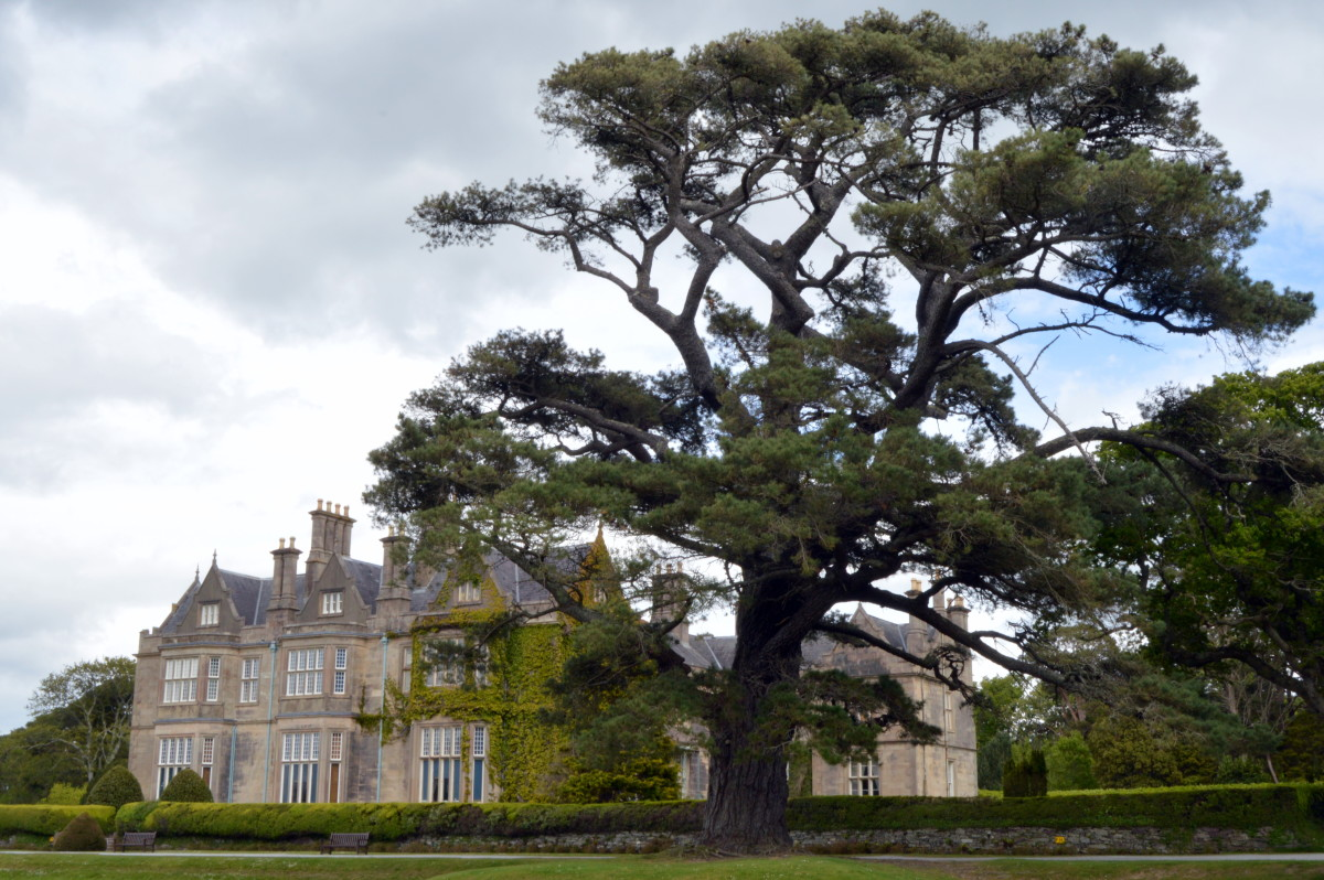 Muckross House and Gardens is a popular stop on the Ring of Kerry.