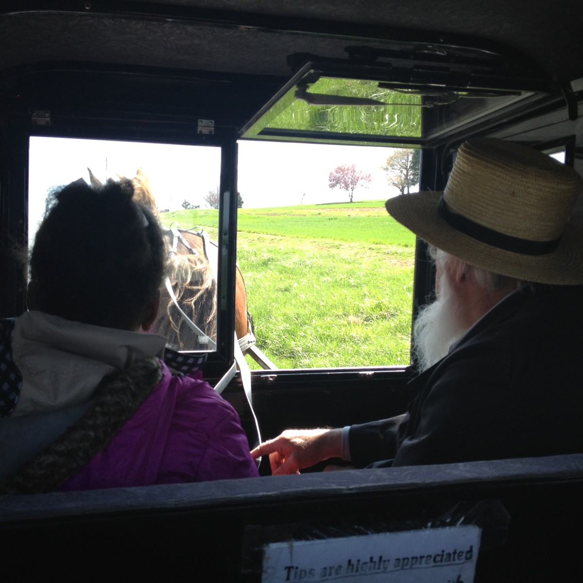 An Amish man giving a buggy tour of Amish country. It is against Amish beliefs to take pictures of their faces. Another great day trip from New York City