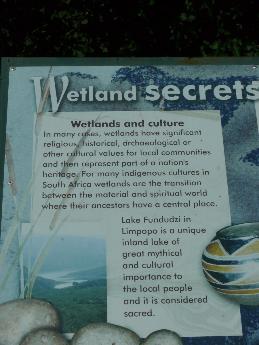 Wetland information