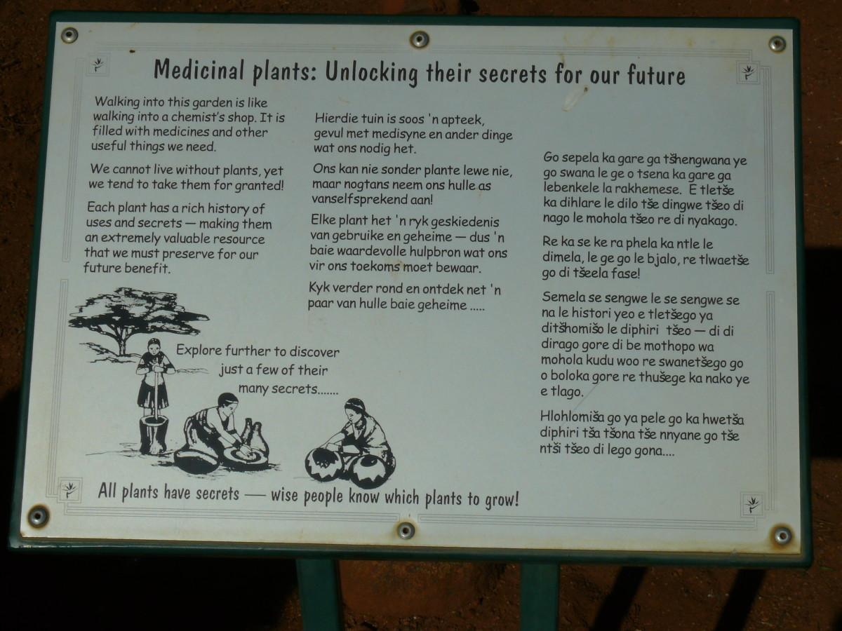 Info-boards at Pretoria Botanical Gardens