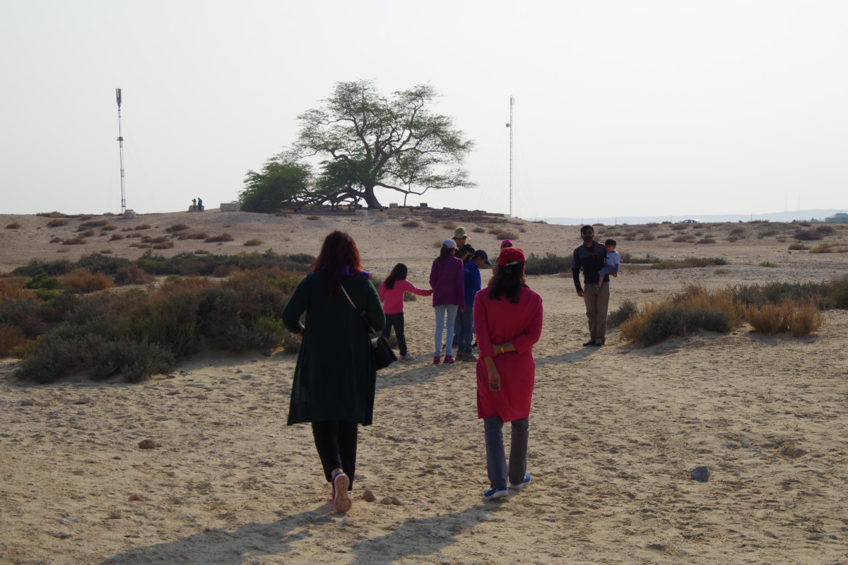 Some members of the entourage hiking toward the Tree (December 2015).