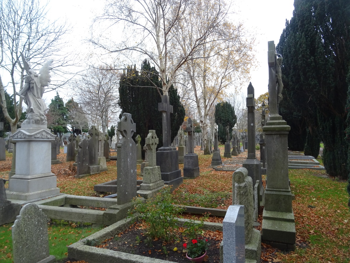 Glasnevin Cemetery is unbelievably large.