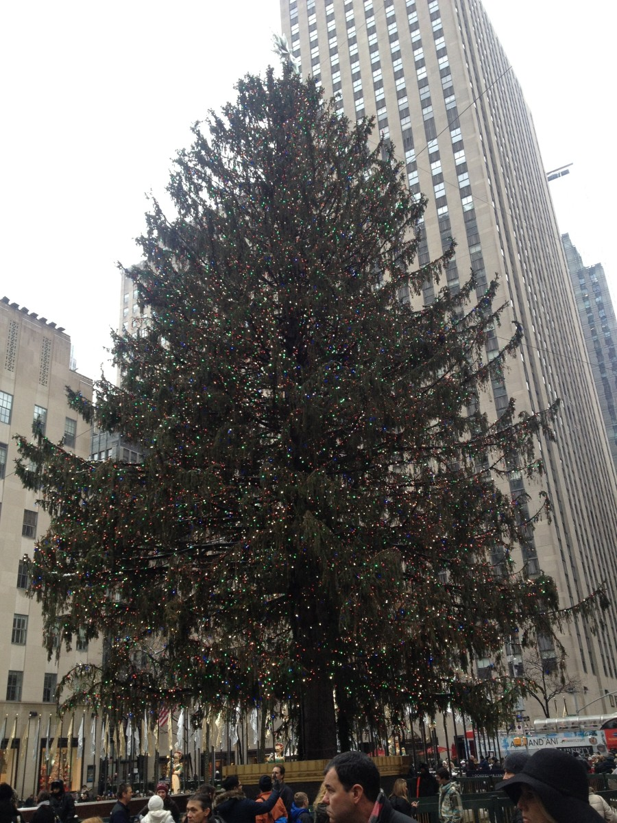World renowned for its size (100 feet tall), the Rockefeller Christmas tree is a New York City must at Christmas time.