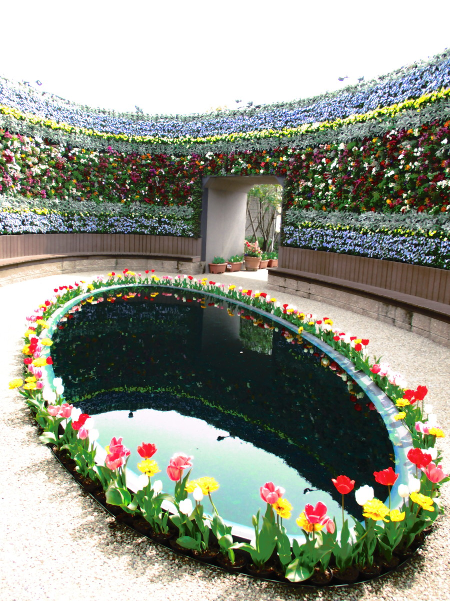 A flower 'room', part of the spring flower exhibit