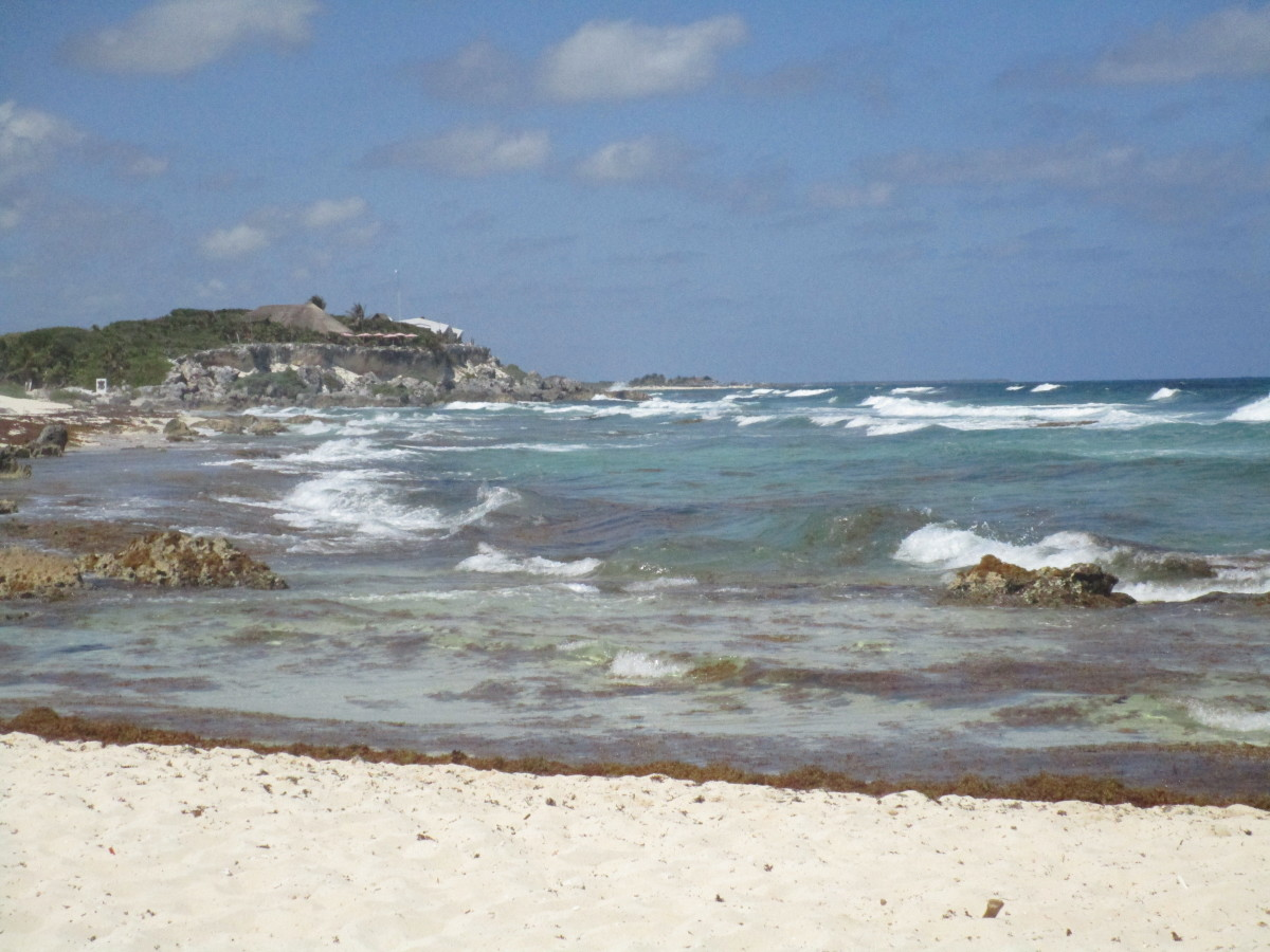The beach where we stopped in Cozumel. Given the presence of many rocks, I highly recommend wearing water shoes if you want to get into the water.