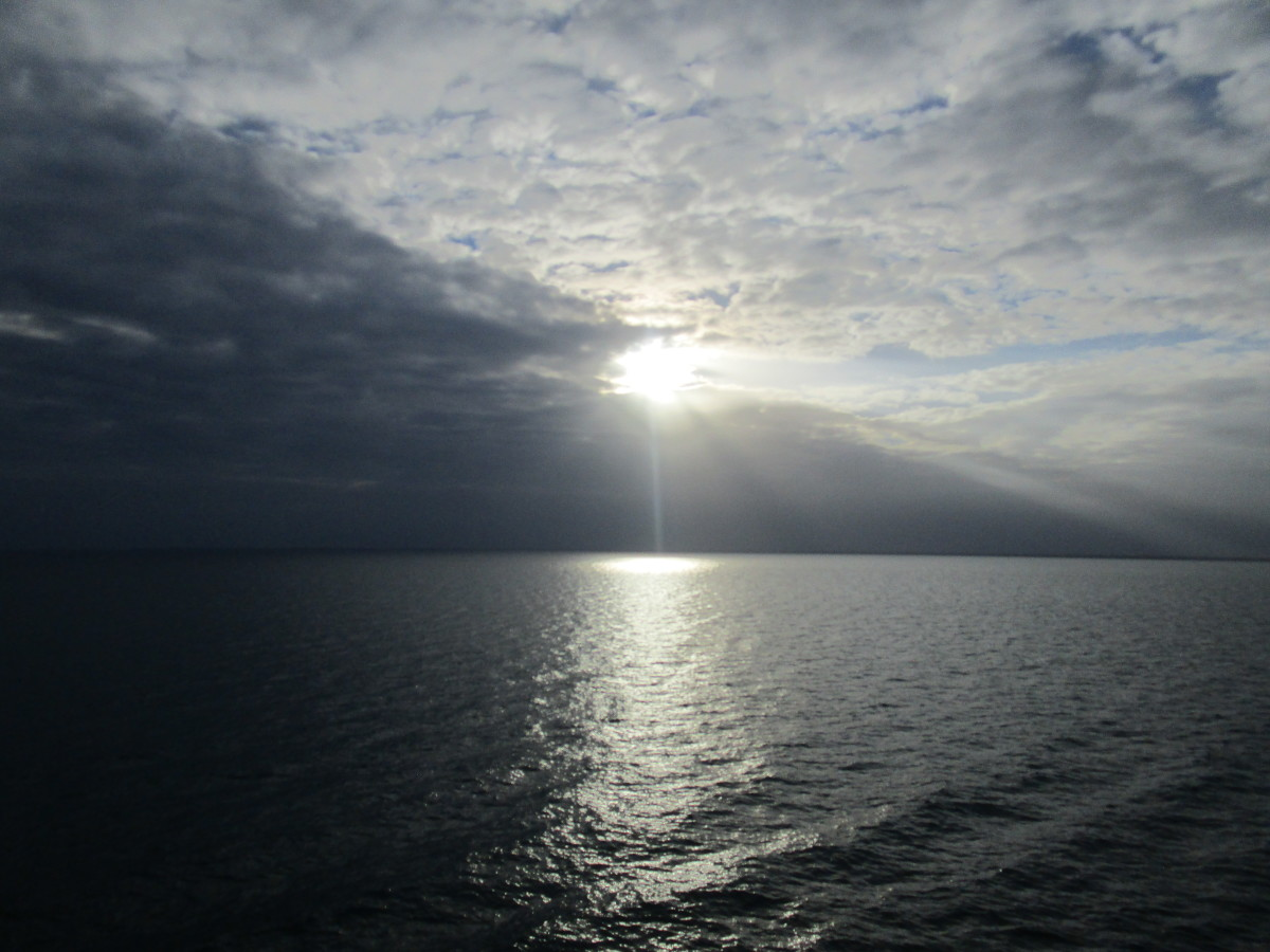 Not related to the disembarkation process, but I just had to include this picture I took during our cruise.