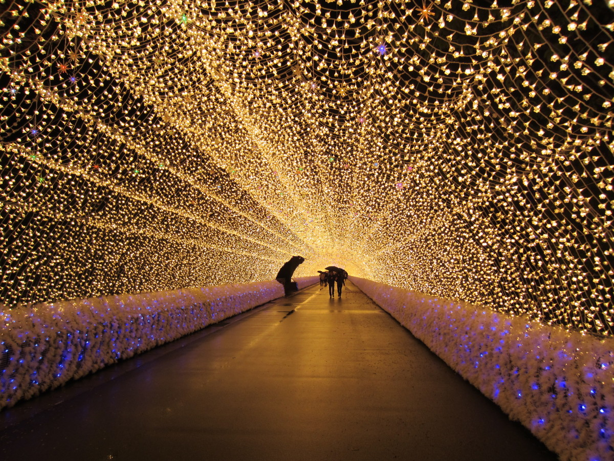 Tunnel of lights at Nabana no Sato