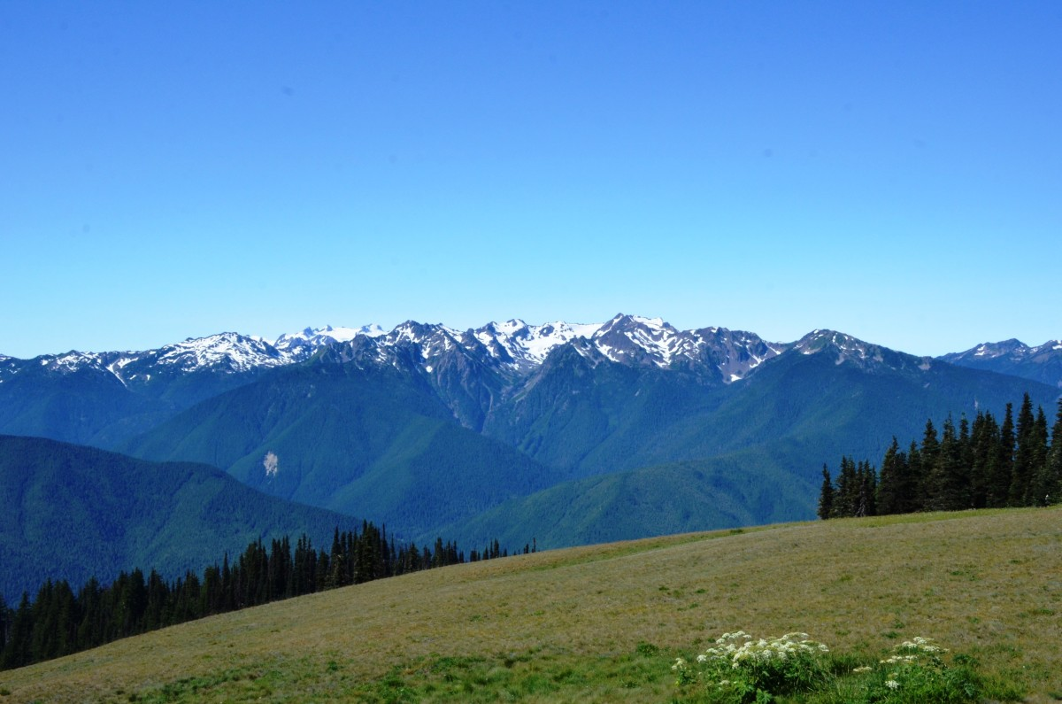 View from the visitor center at Hurricane Ridge @ Olympic National Park