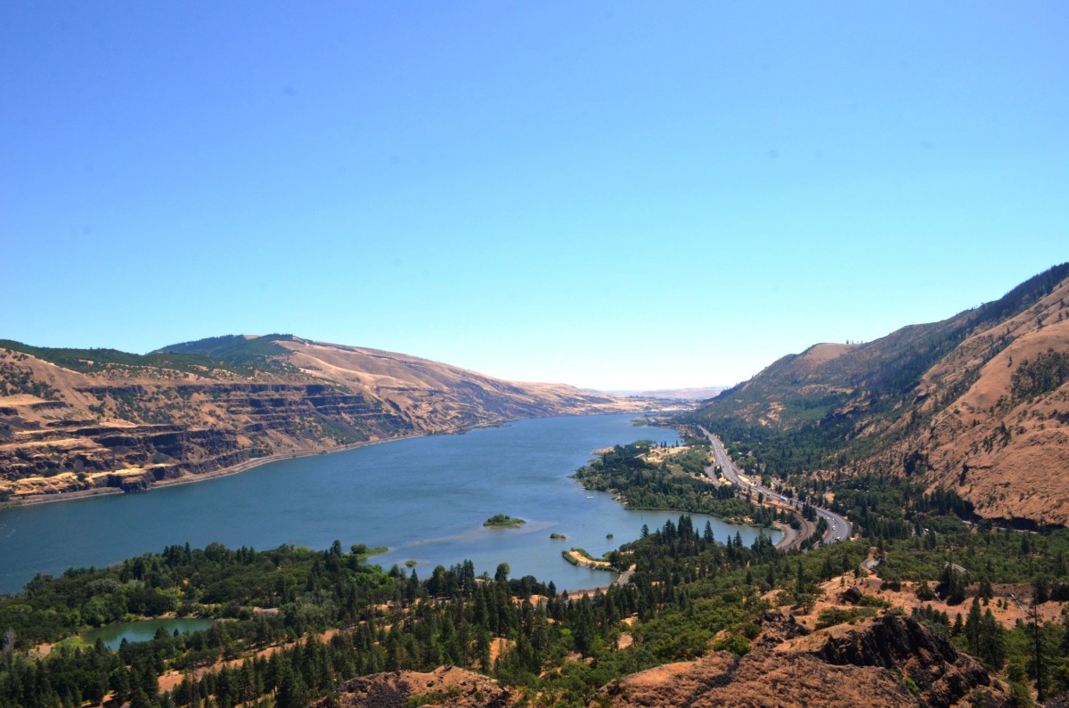 Eastward view from Rowena Crest Viewpoint