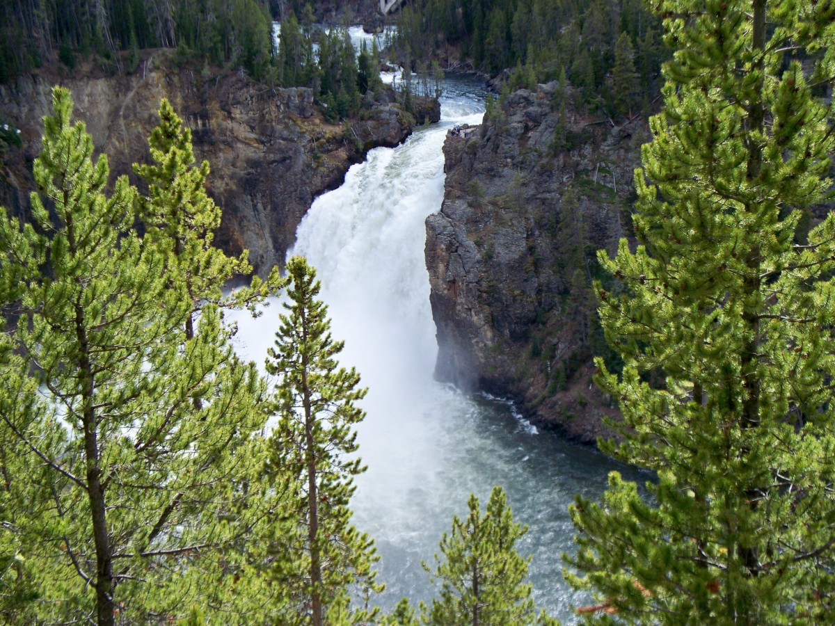 Upper Yellowstone Falls in Yellowstone National Park