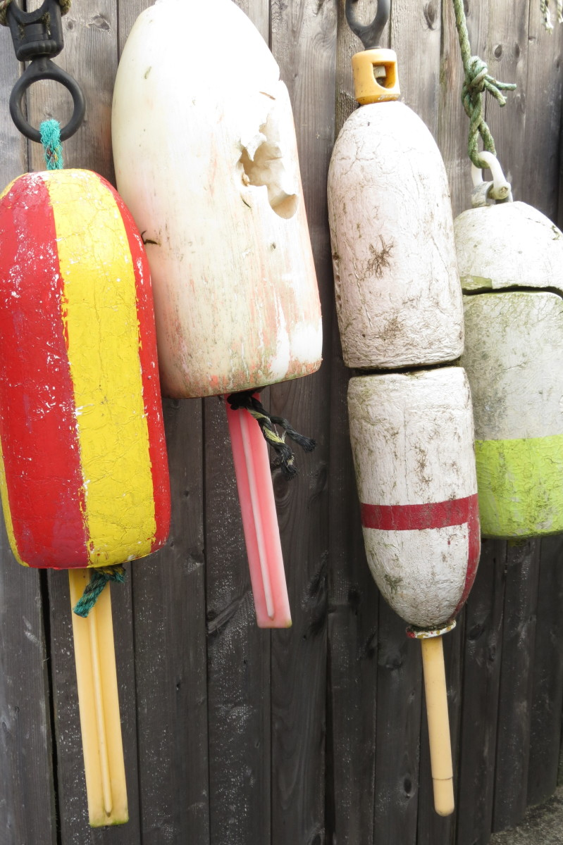 Buoys on fence, Maine