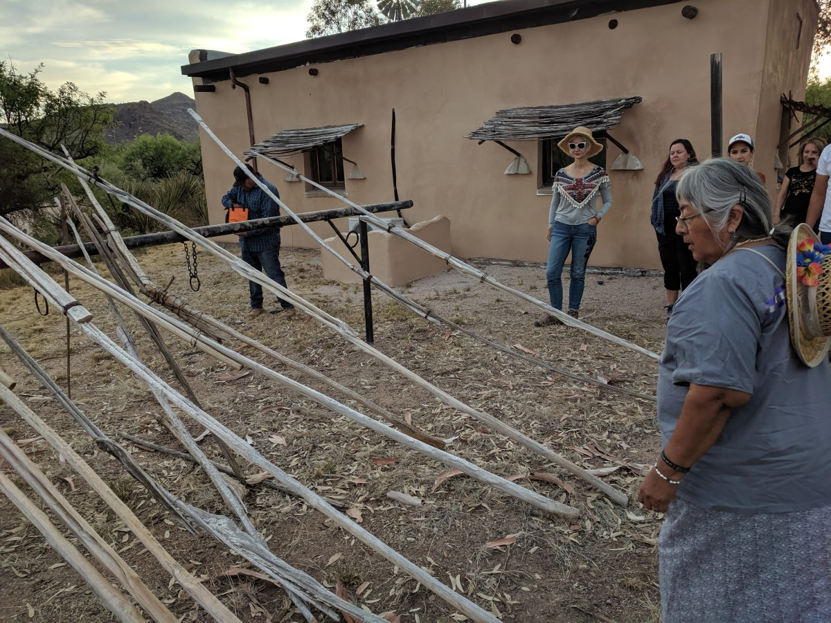 An O'Odham elder (in foreground) explained the traditional harvesting tool to us.