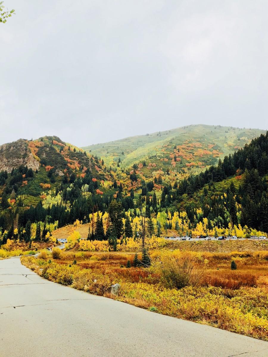 Big Cottonwood Canyon