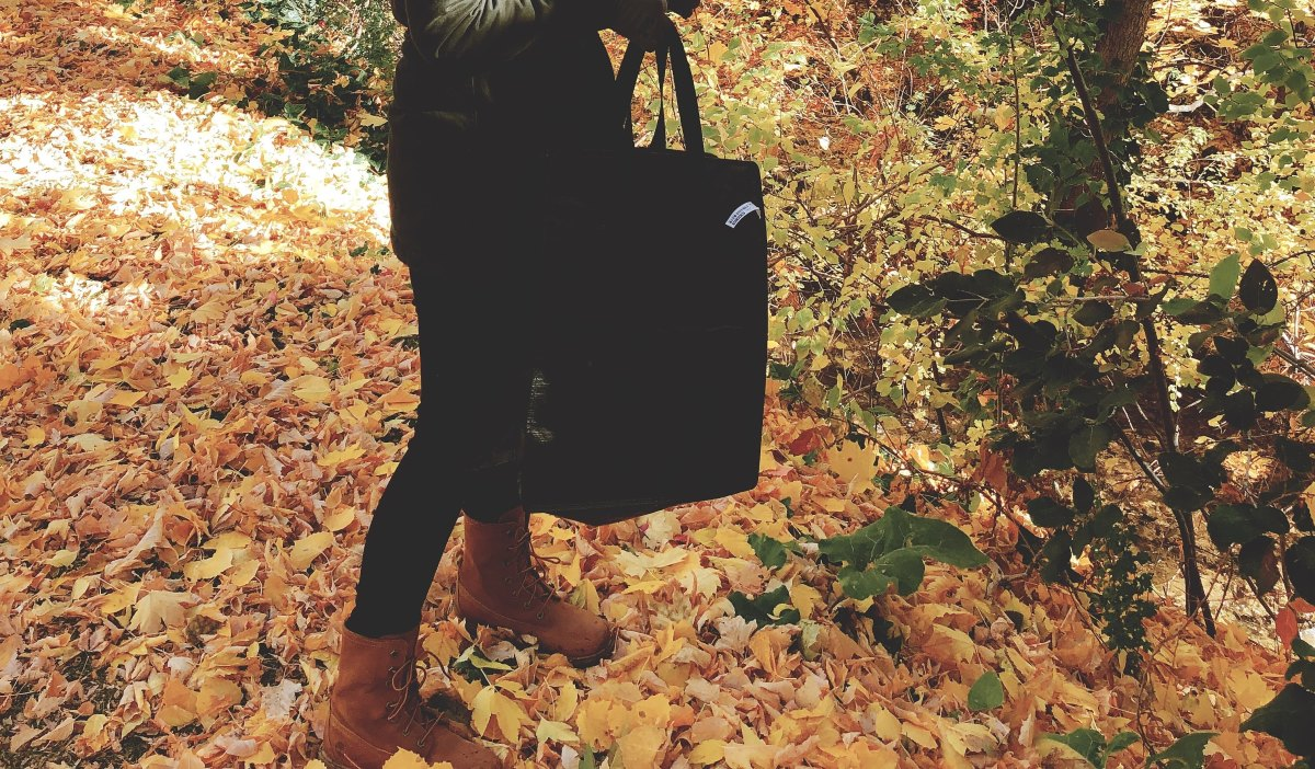 Gathering Fall Leaves in Memory Grove Park