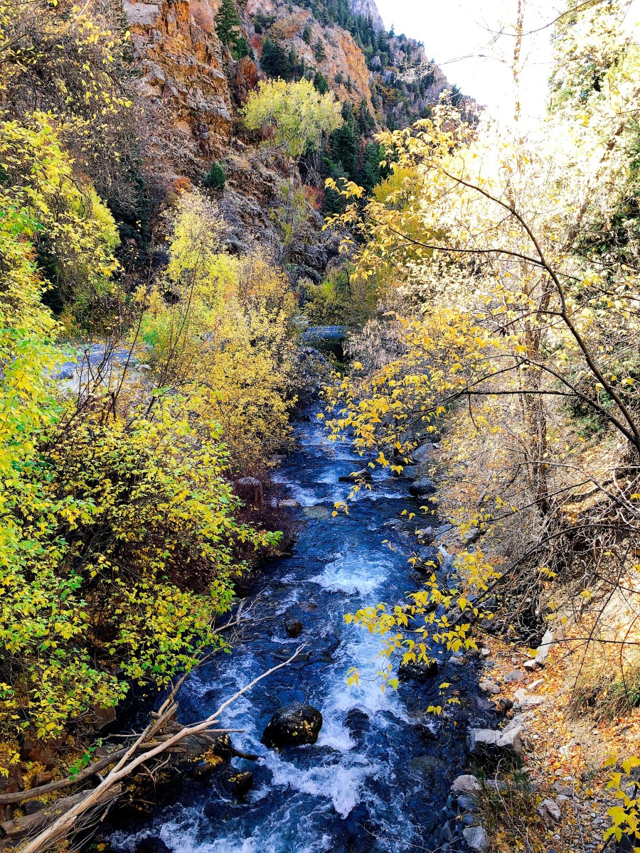 Fall Colors at Timpanogos Cave National Monument