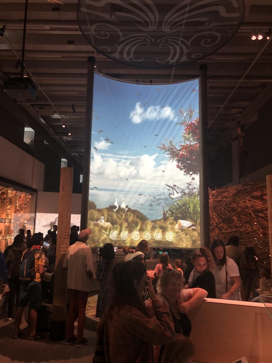 Inside the Nature Exhibit