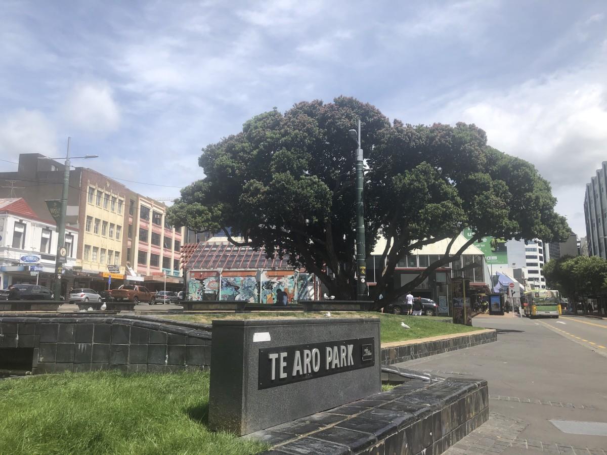 Te Aro Park