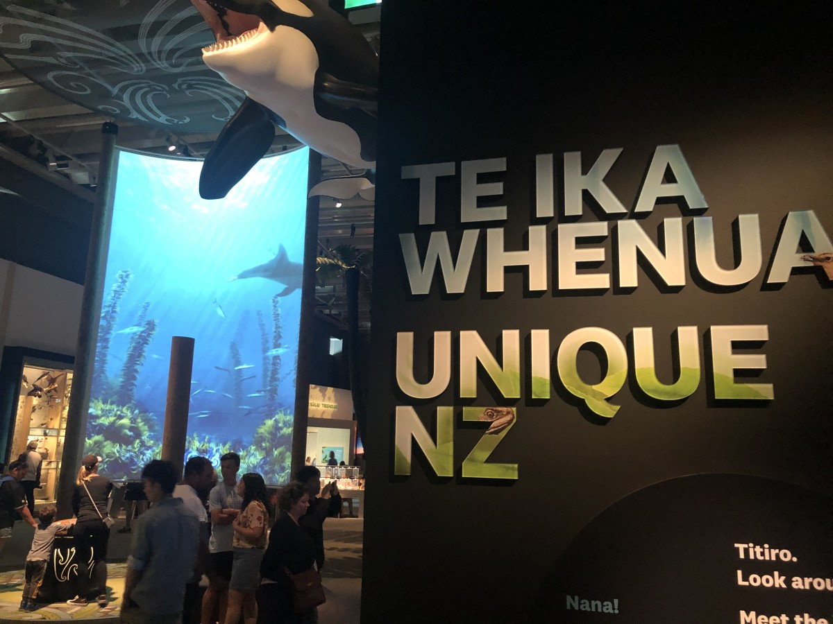 Entrance to the Permanent Nature Exhibition at Te Papa