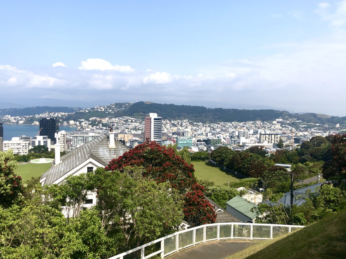 Another Breathtaking View of Wellington